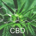 label cbd cannabidiol
